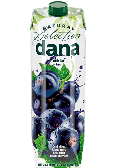 DANA nektar 25 %, črni ribez